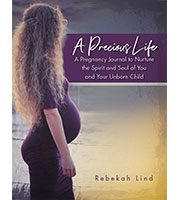 A Precious Life: A Pregnancy Journal to Nurture the Spirit and Soul of You and Your Unborn Child